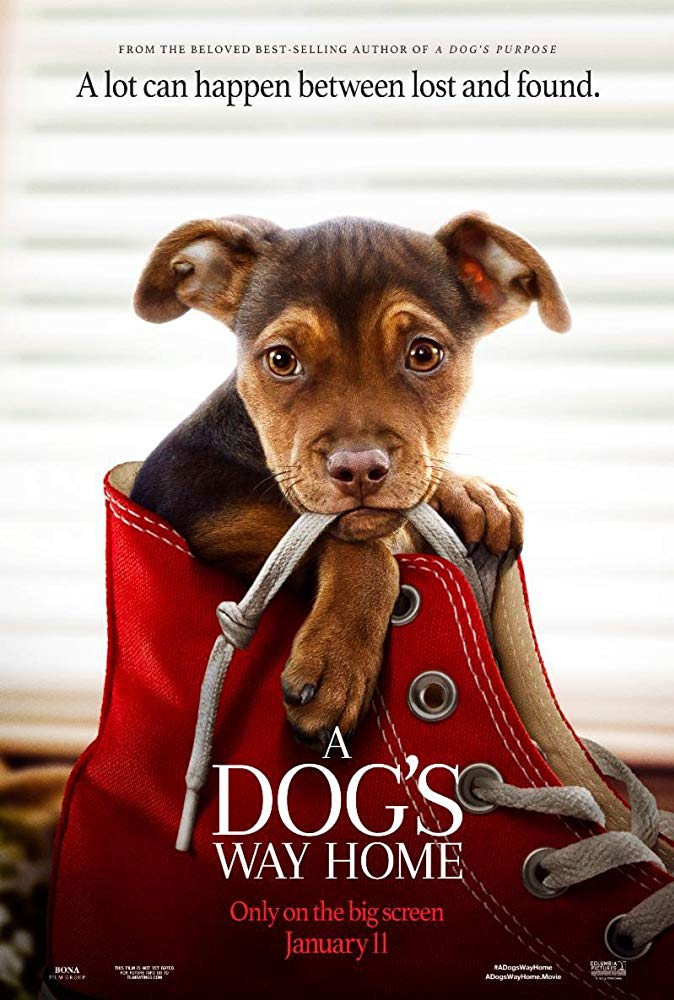 "Filmas ""Belos kelionė namo"" / ""A Dog's Way Home"" (2019)"